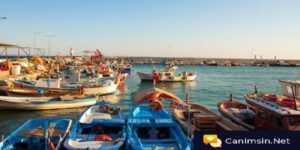 Balıkesir Sohbet Siteleri